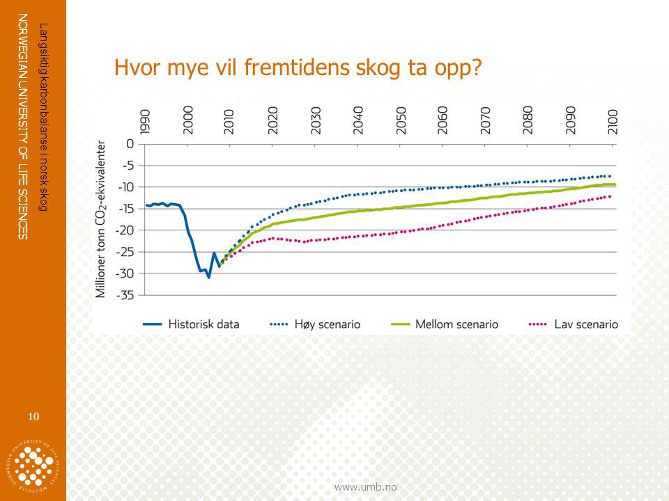 Hvor mye vil fremtidens skog ta opp