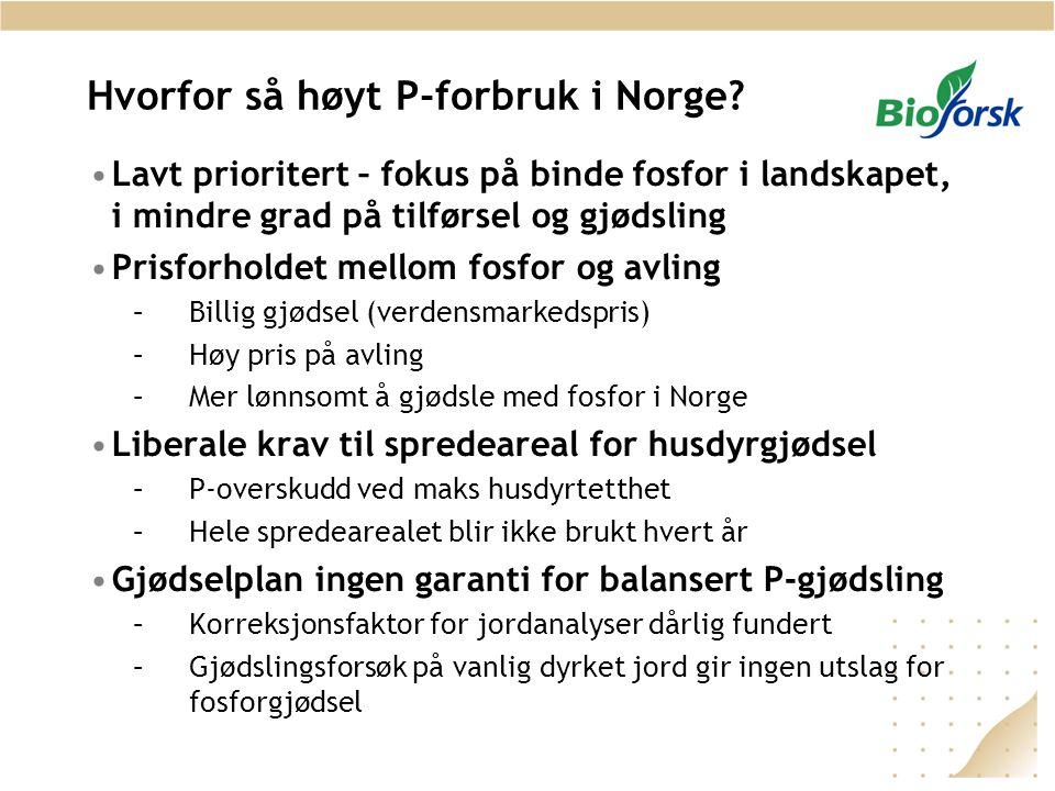 Hvorfor så høyt P-forbruk i Norge