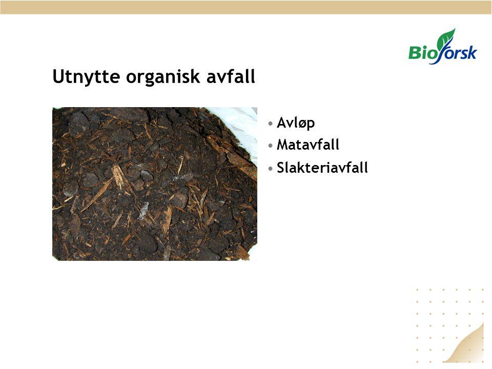 Utnytte organisk avfall