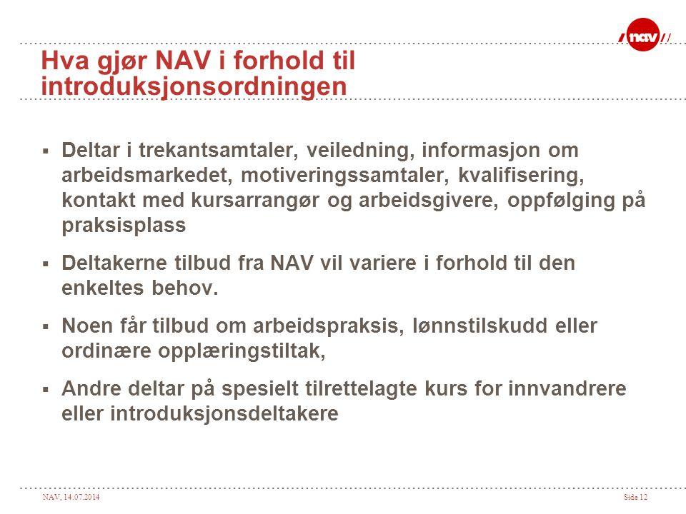 Hva gjør NAV i forhold til introduksjonsordningen