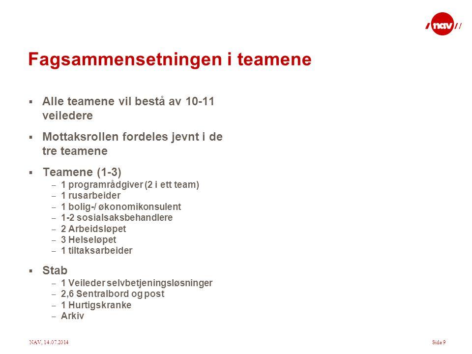 Fagsammensetningen i teamene