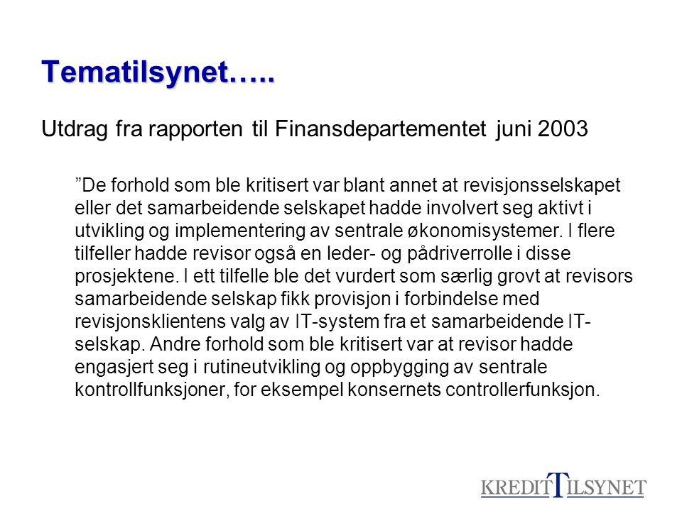 Tematilsynet….. Utdrag fra rapporten til Finansdepartementet juni 2003