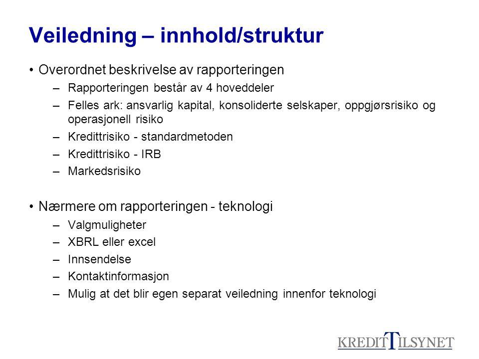 Veiledning – innhold/struktur