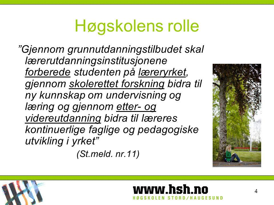 Høgskolens rolle