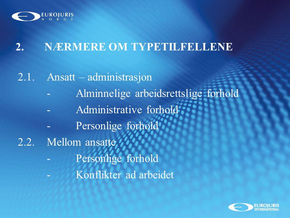 2. NÆRMERE OM TYPETILFELLENE