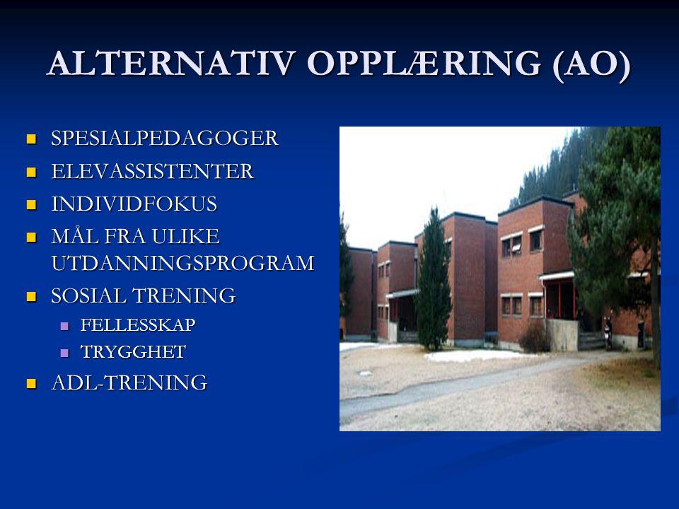 ALTERNATIV OPPLÆRING (AO)