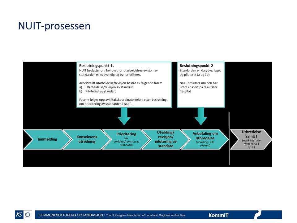 NUIT-prosessen