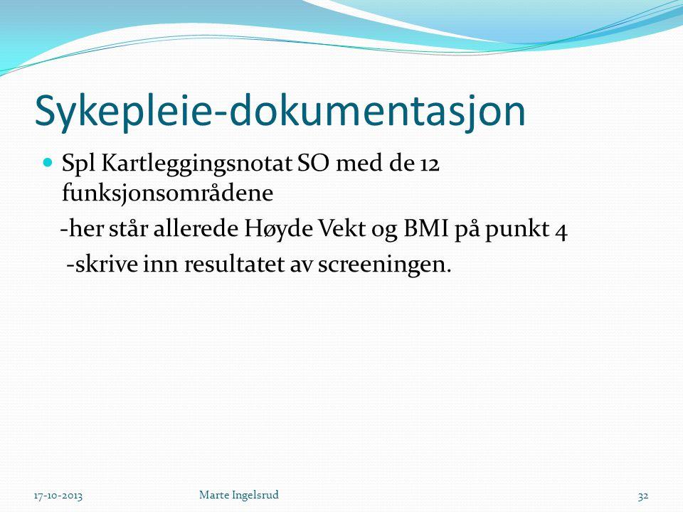 Sykepleie-dokumentasjon