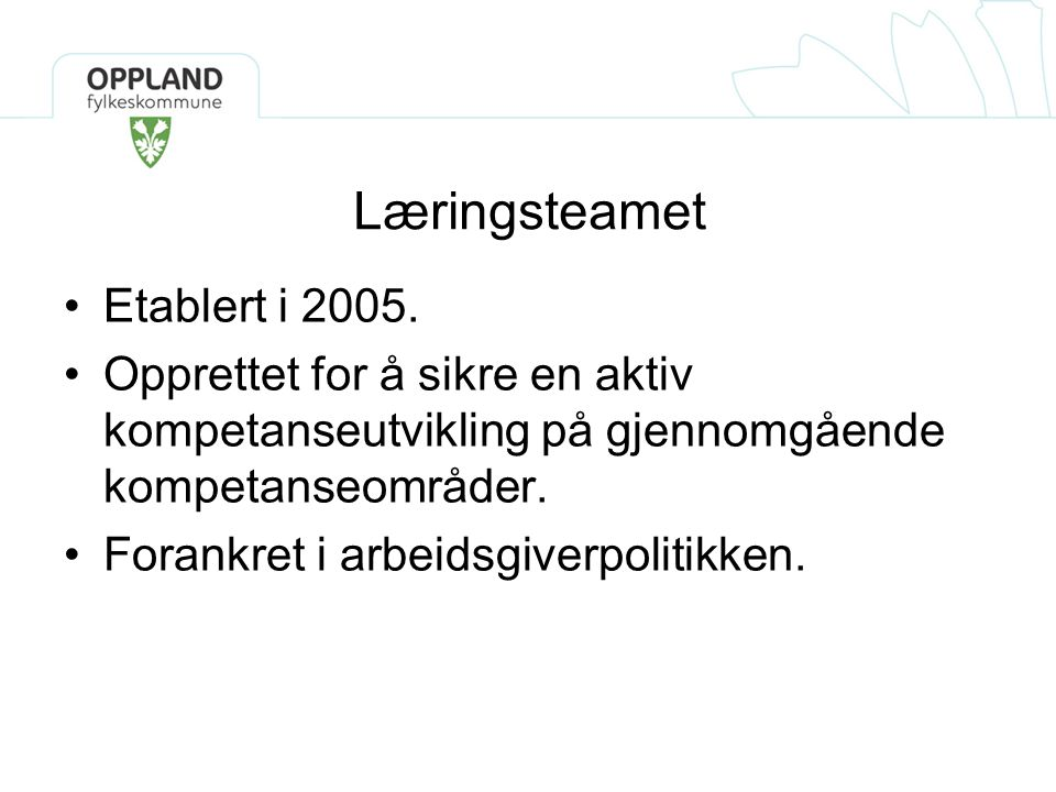 Læringsteamet Etablert i 2005.
