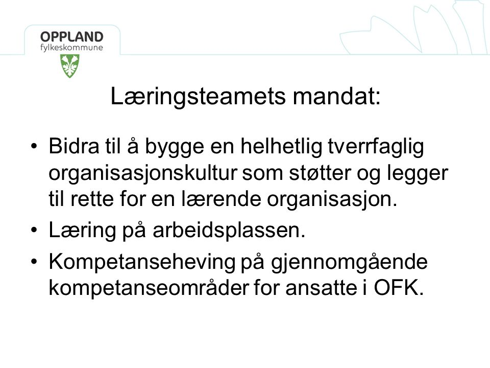 Læringsteamets mandat: