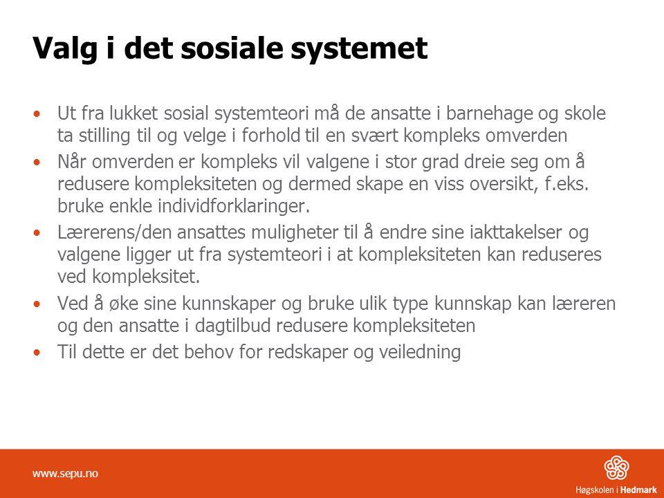 Valg i det sosiale systemet