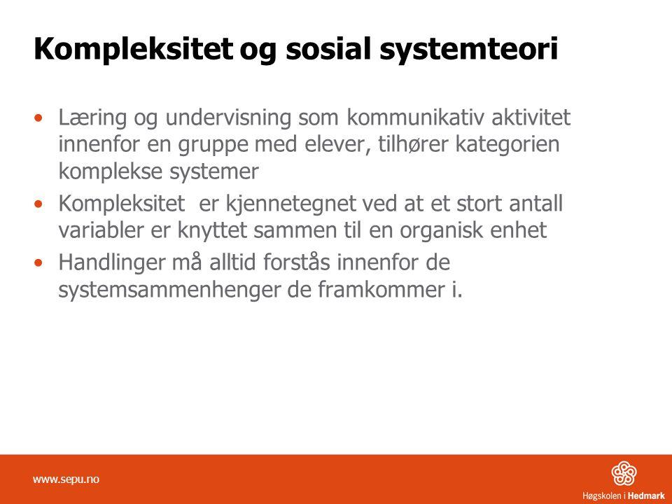 Kompleksitet og sosial systemteori