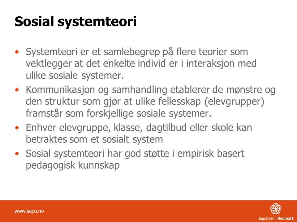 Sosial systemteori Systemteori er et samlebegrep på flere teorier som vektlegger at det enkelte individ er i interaksjon med ulike sosiale systemer.