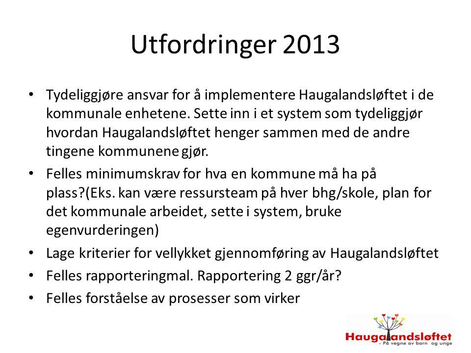 Utfordringer 2013
