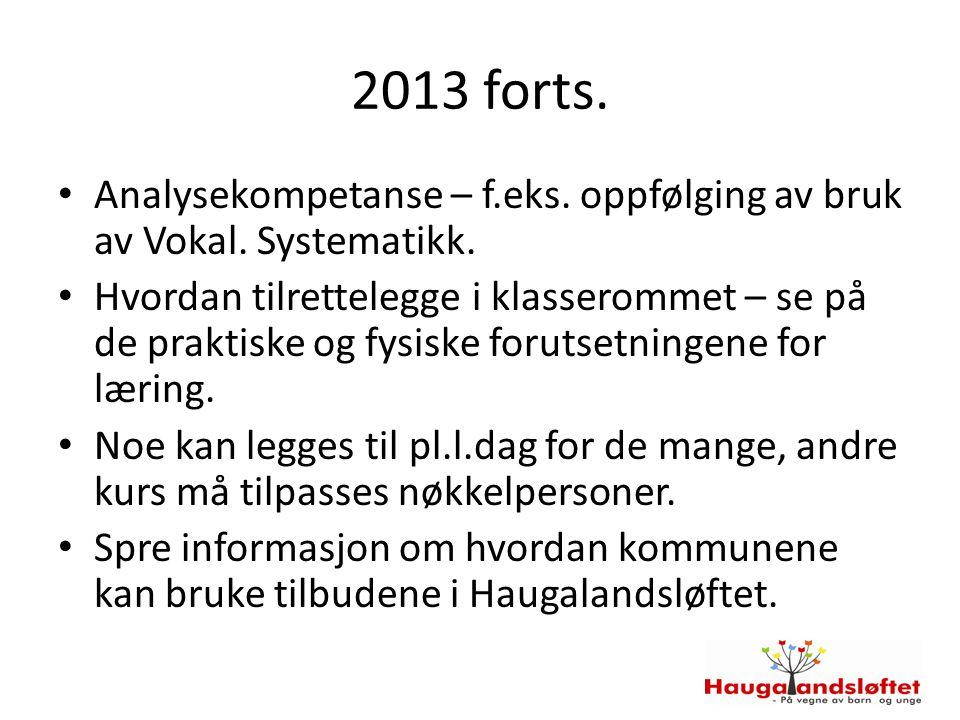 2013 forts. Analysekompetanse – f.eks. oppfølging av bruk av Vokal. Systematikk.