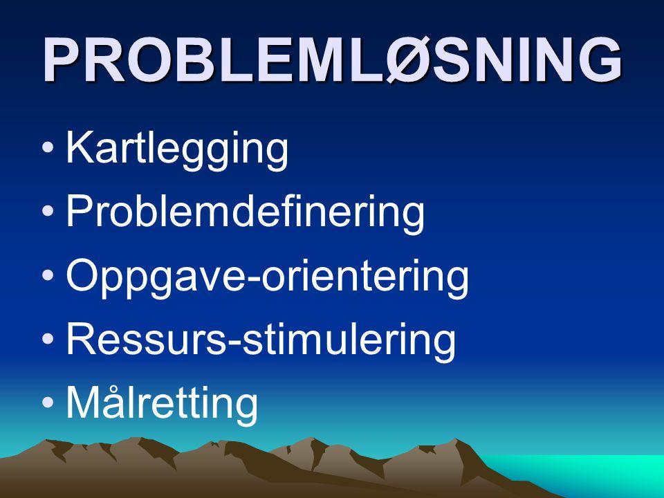 PROBLEMLØSNING Kartlegging Problemdefinering Oppgave-orientering