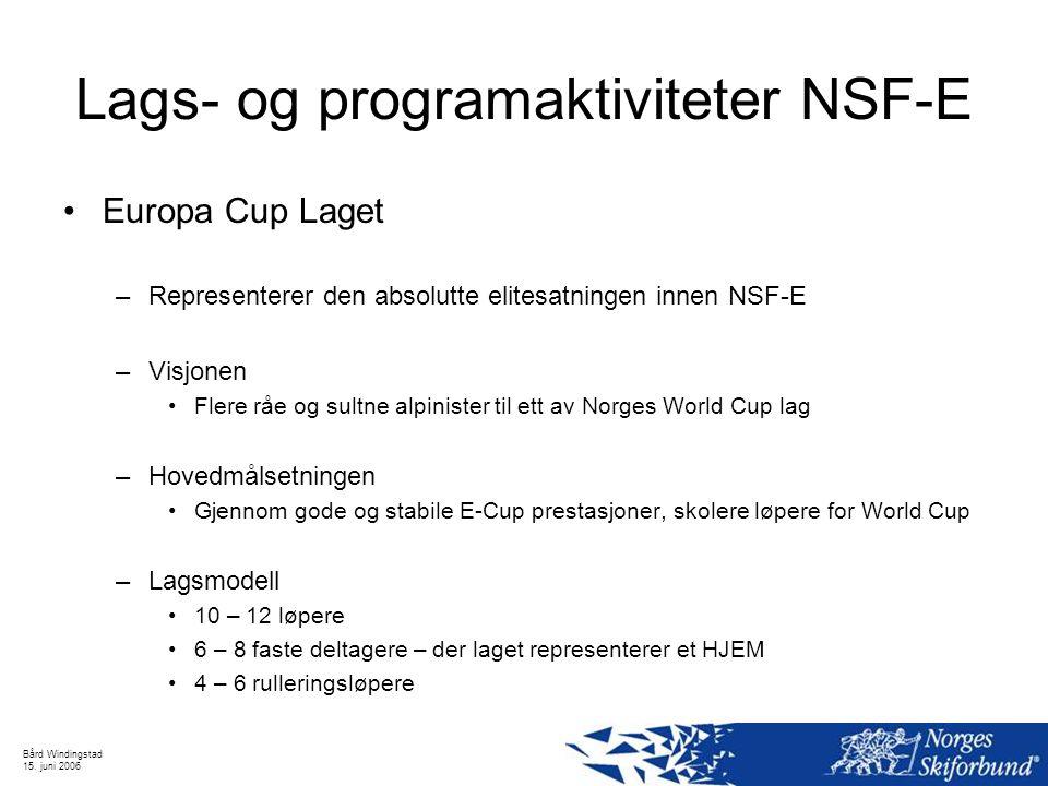 Lags- og programaktiviteter NSF-E