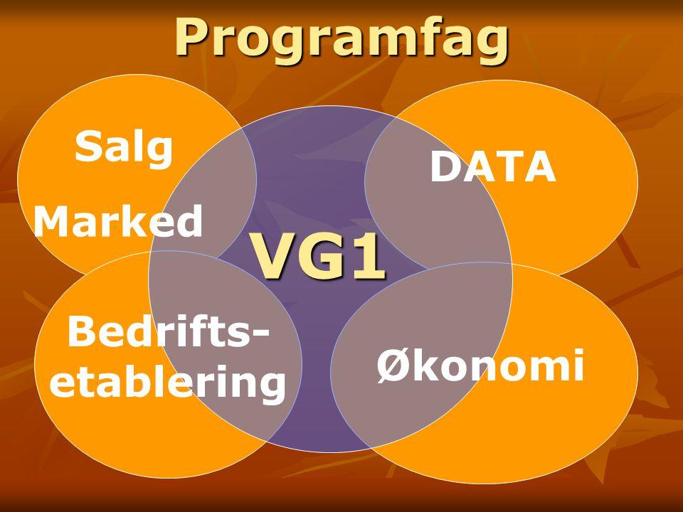 Programfag VG1 Salg Marked DATA Bedrifts-etablering Økonomi
