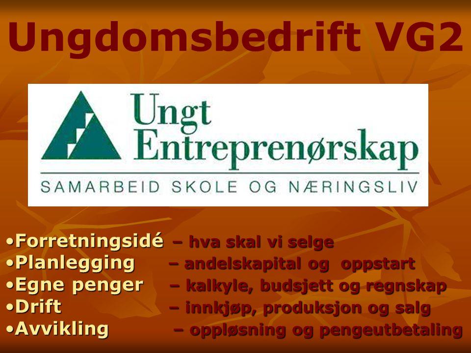 Ungdomsbedrift VG2 Forretningsidé – hva skal vi selge