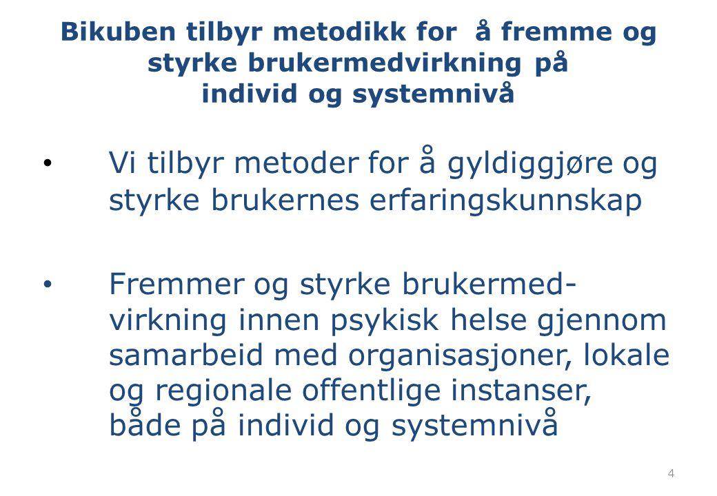 Bikuben tilbyr metodikk for å fremme og styrke brukermedvirkning på individ og systemnivå