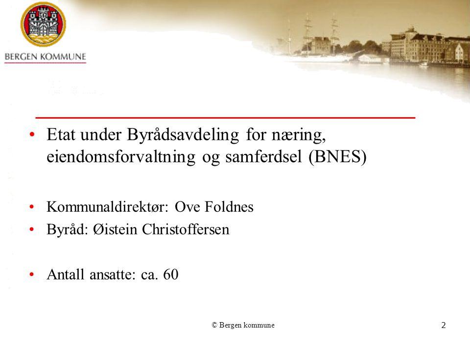 Etat under Byrådsavdeling for næring, eiendomsforvaltning og samferdsel (BNES)