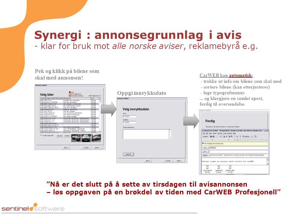 Synergi : annonsegrunnlag i avis - klar for bruk mot alle norske aviser, reklamebyrå e.g.