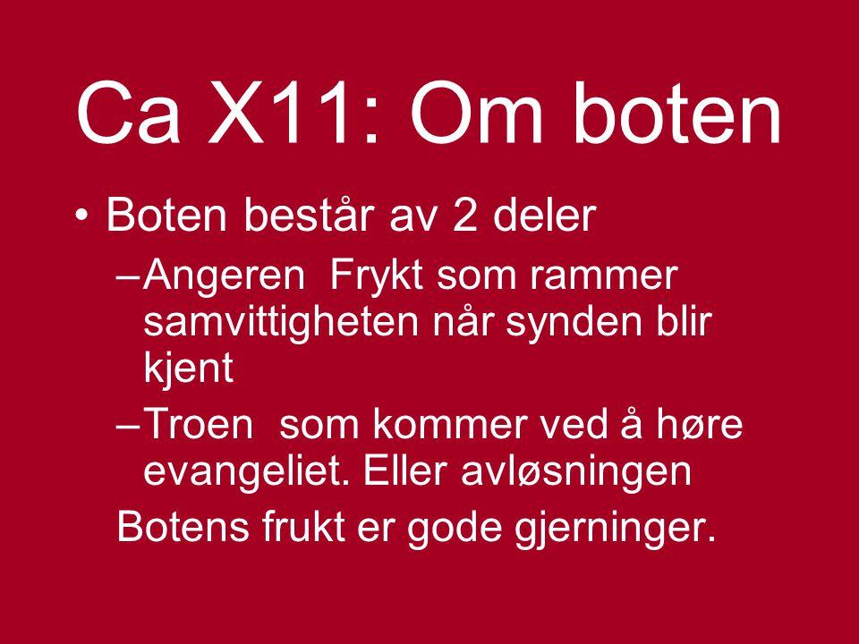 Ca X11: Om boten Boten består av 2 deler
