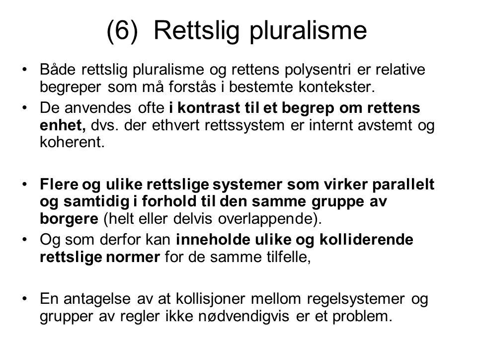 (6) Rettslig pluralisme