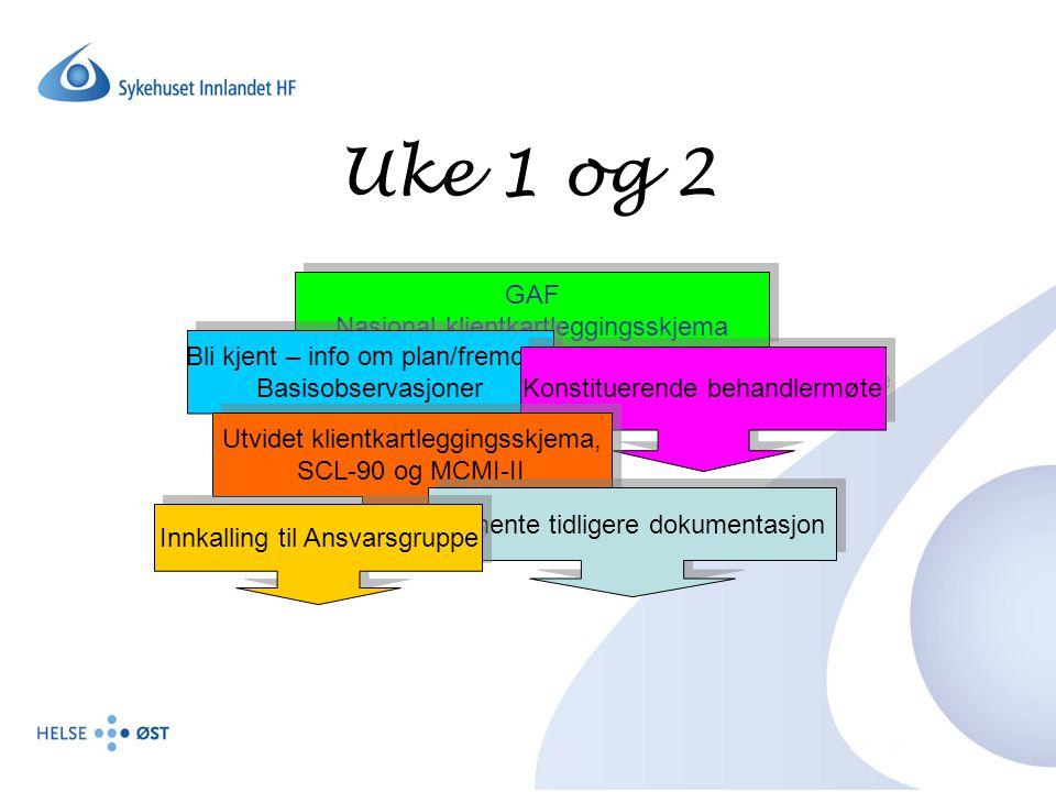Uke 1 og 2 GAF Nasjonal klientkartleggingsskjema