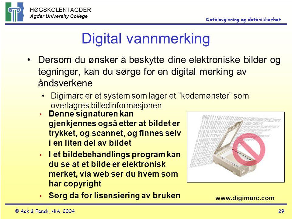 Digital vannmerking Dersom du ønsker å beskytte dine elektroniske bilder og tegninger, kan du sørge for en digital merking av åndsverkene.
