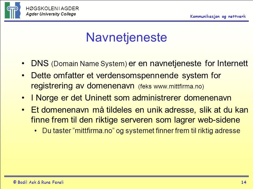 Navnetjeneste DNS (Domain Name System) er en navnetjeneste for Internett.