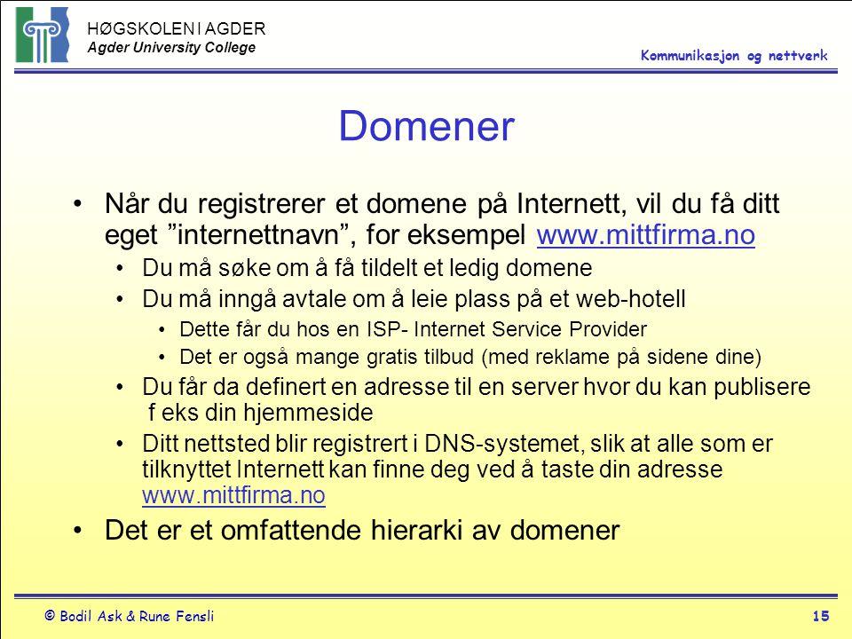 Domener Når du registrerer et domene på Internett, vil du få ditt eget internettnavn , for eksempel www.mittfirma.no.