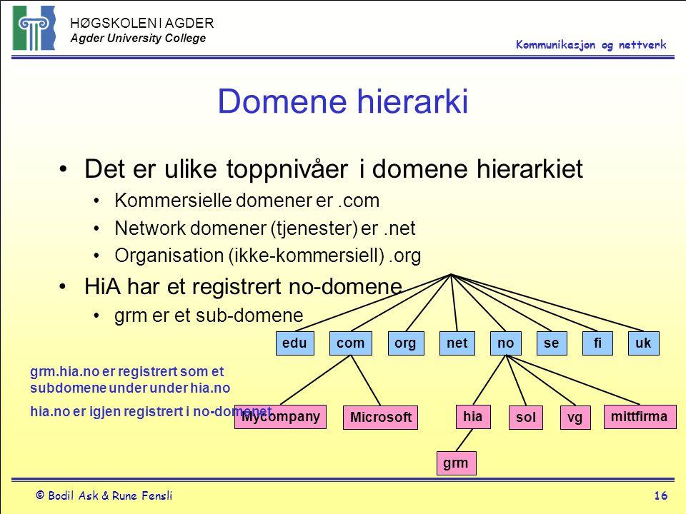 Domene hierarki Det er ulike toppnivåer i domene hierarkiet