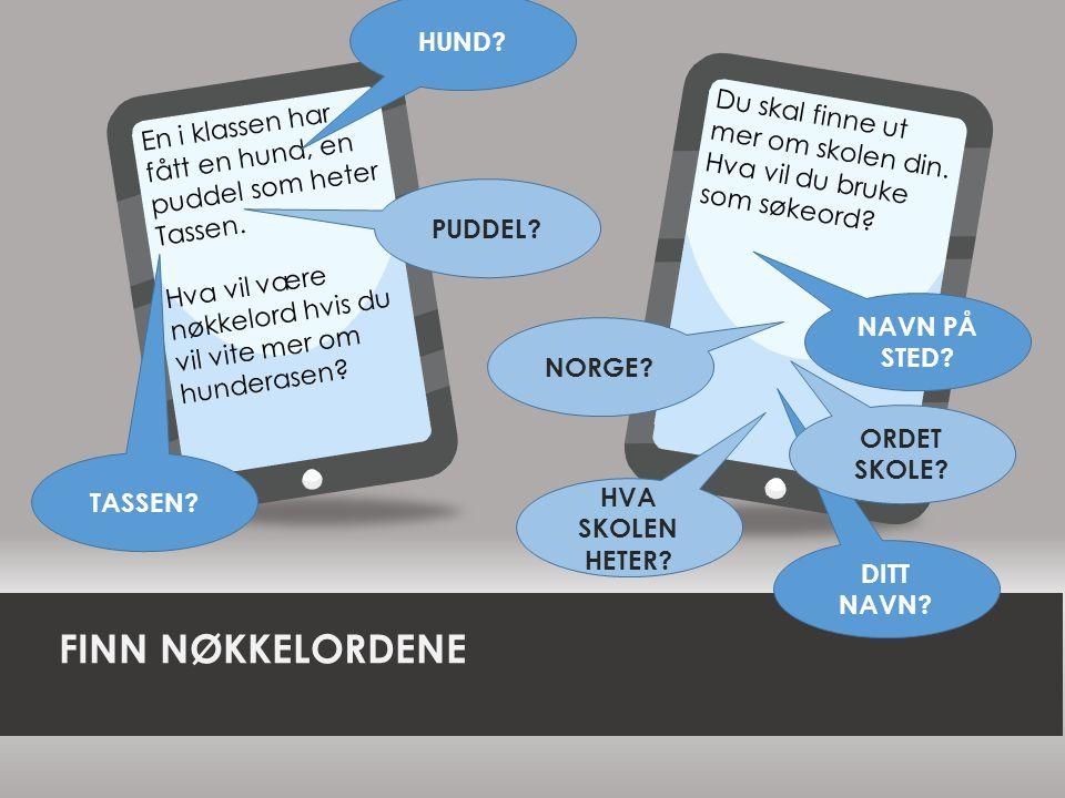 FINN NØKKELORDENE HUND