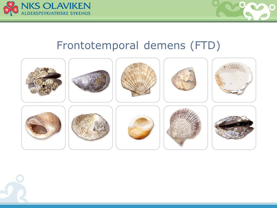 Frontotemporal demens (FTD)