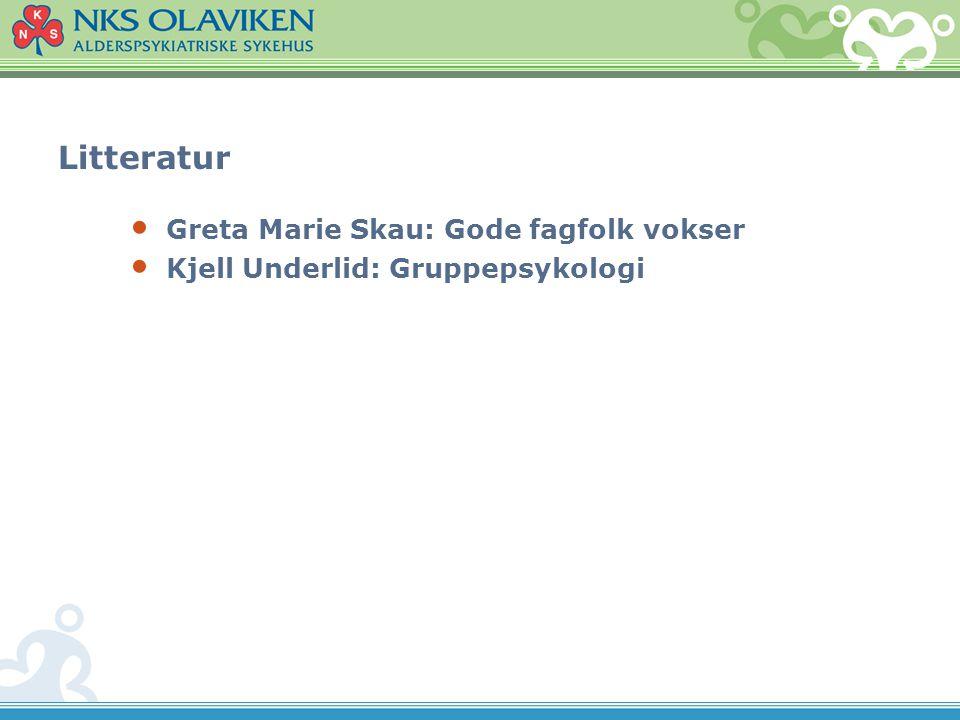 Litteratur Greta Marie Skau: Gode fagfolk vokser