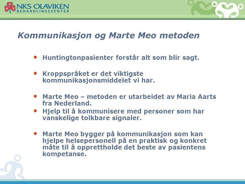 Kommunikasjon og Marte Meo metoden