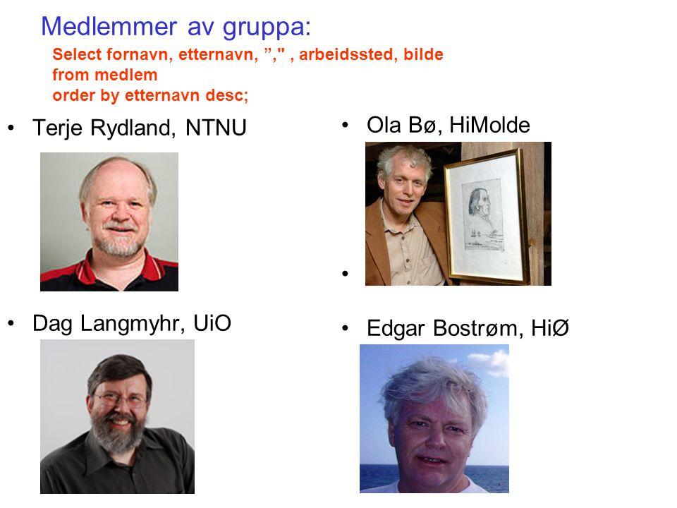 Medlemmer av gruppa: Terje Rydland, NTNU Dag Langmyhr, UiO
