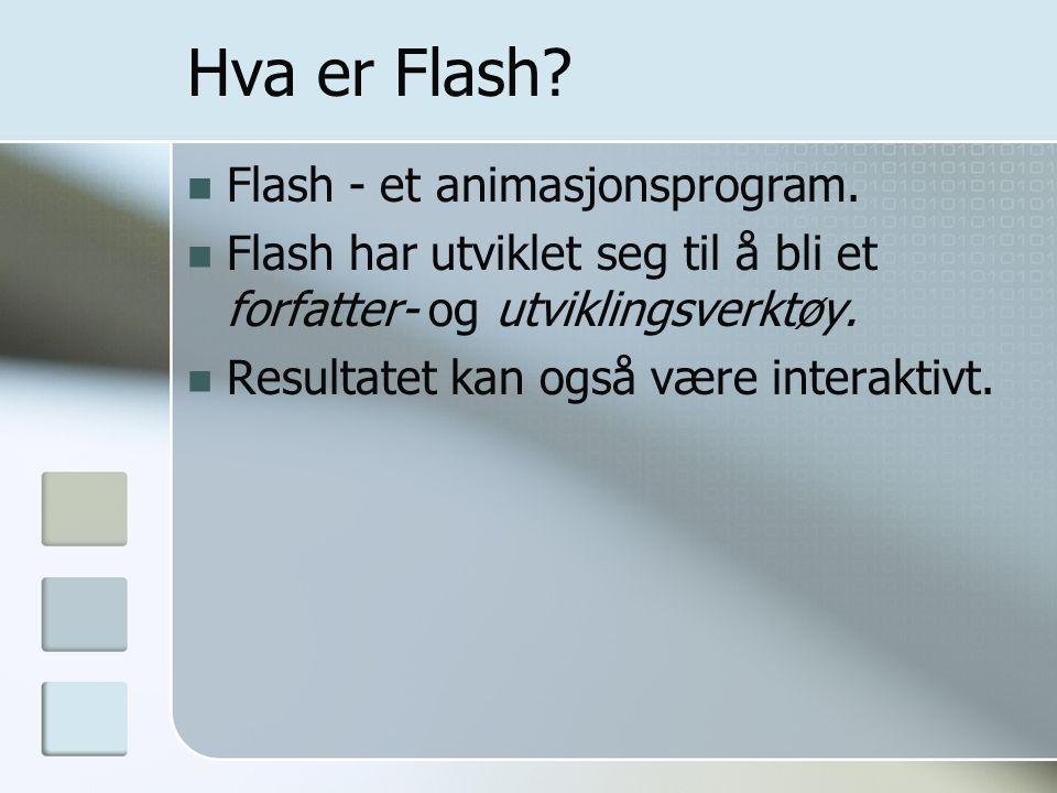 Hva er Flash Flash - et animasjonsprogram.