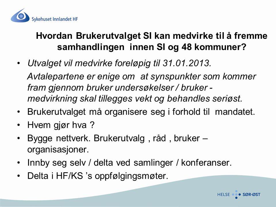 Utvalget vil medvirke foreløpig til 31.01.2013.