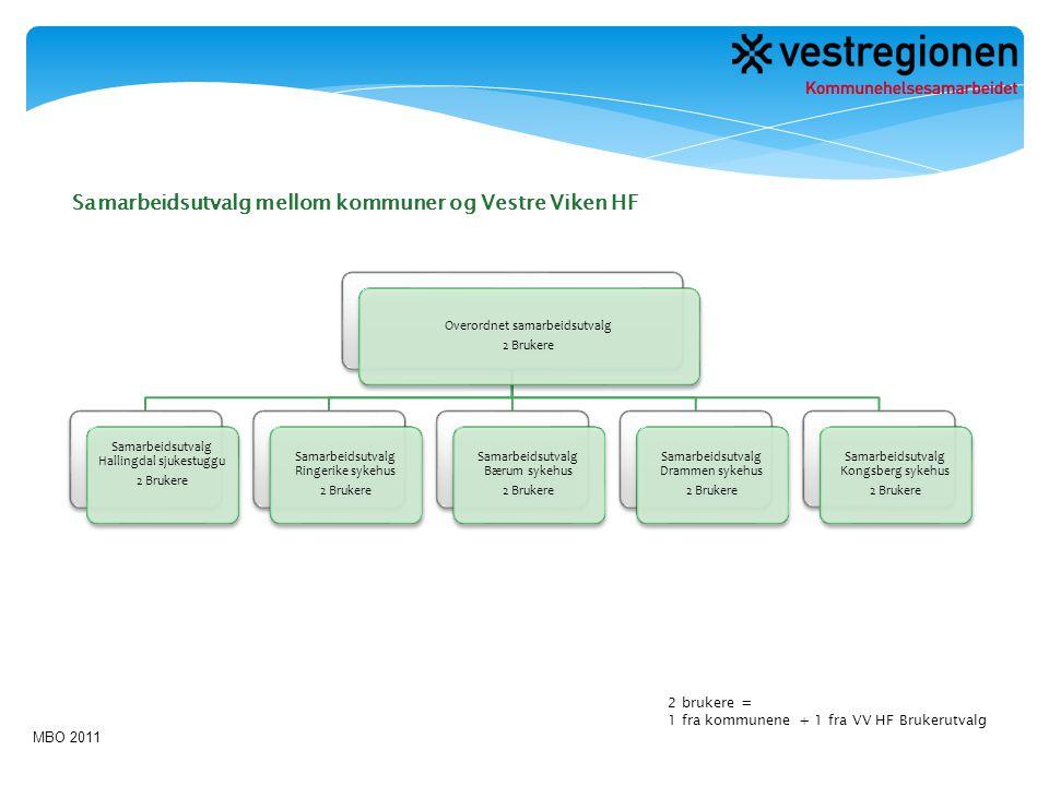 Samarbeidsutvalg mellom kommuner og Vestre Viken HF