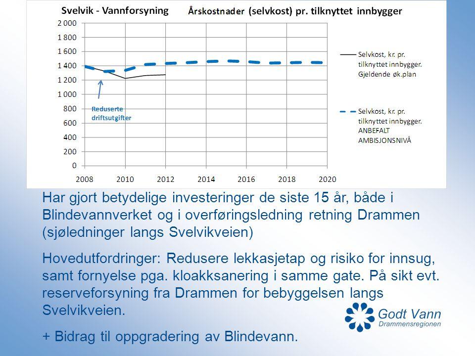 Har gjort betydelige investeringer de siste 15 år, både i Blindevannverket og i overføringsledning retning Drammen (sjøledninger langs Svelvikveien)