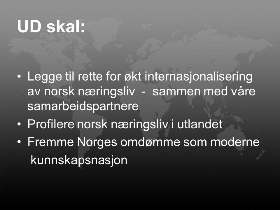 UD skal: Legge til rette for økt internasjonalisering av norsk næringsliv - sammen med våre samarbeidspartnere.