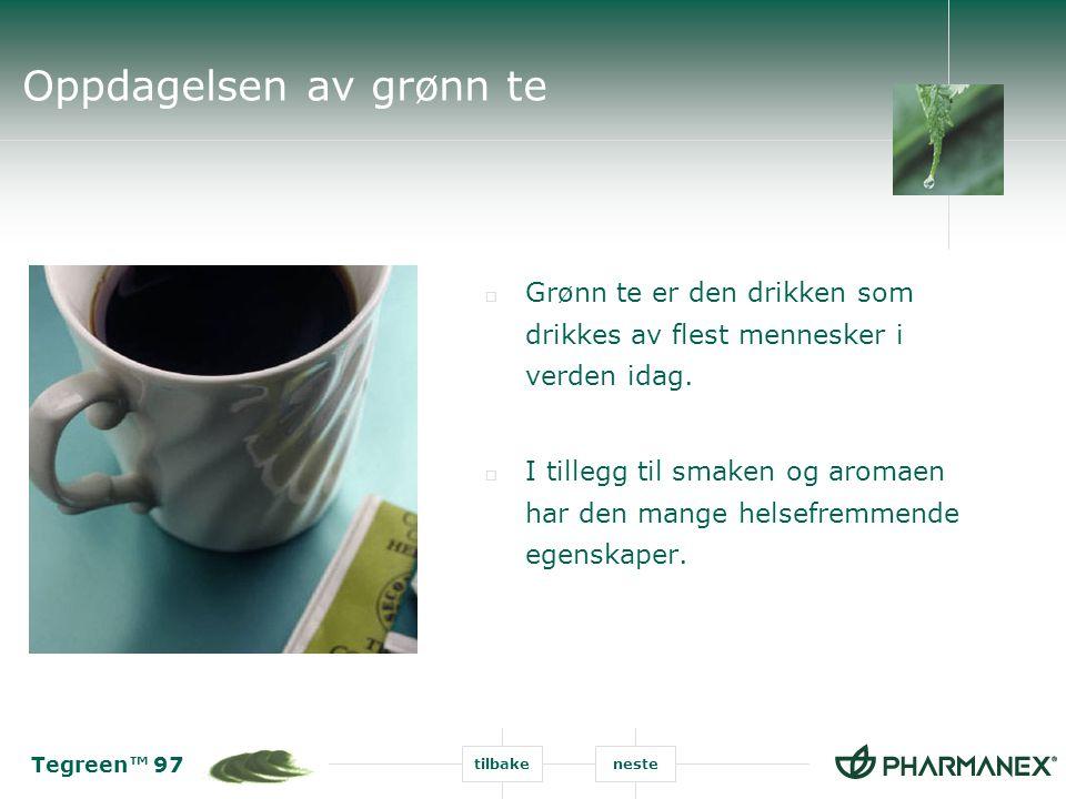 Oppdagelsen av grønn te