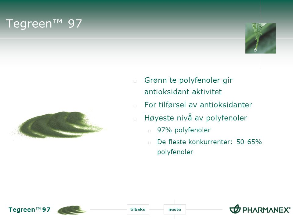 Tegreen™ 97 Grønn te polyfenoler gir antioksidant aktivitet