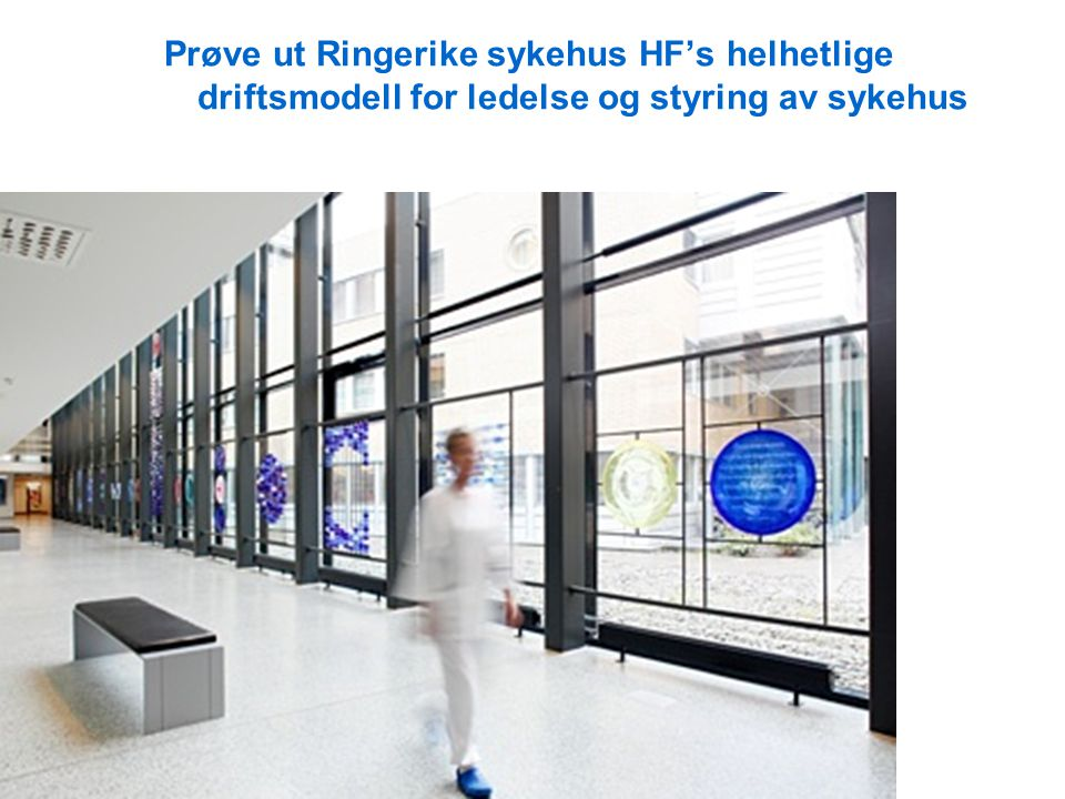 Prøve ut Ringerike sykehus HF's helhetlige