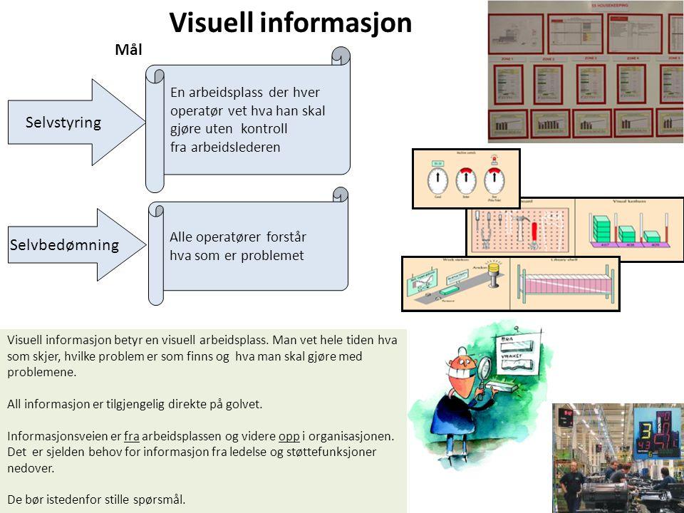 Visuell informasjon Mål Selvstyring Selvbedømning