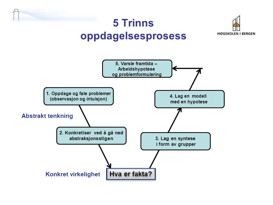 5 Trinns oppdagelsesprosess