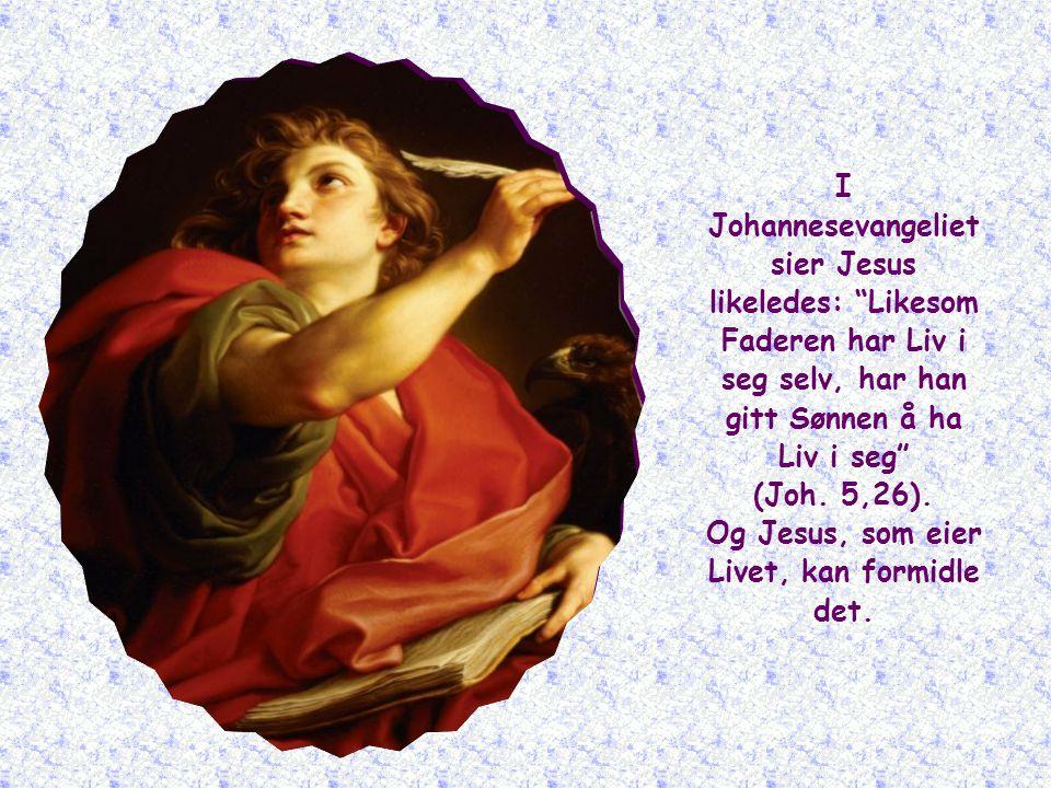 I Johannesevangeliet sier Jesus likeledes: Likesom Faderen har Liv i seg selv, har han gitt Sønnen å ha Liv i seg (Joh.