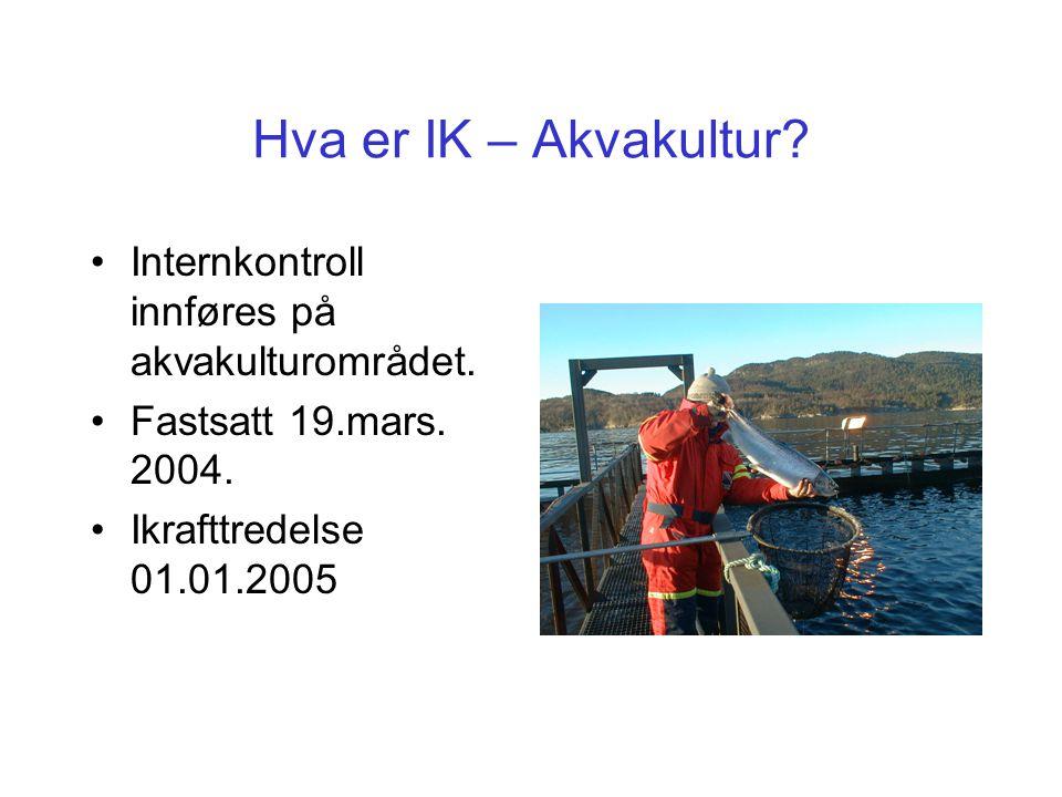 Hva er IK – Akvakultur Internkontroll innføres på akvakulturområdet.